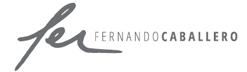 logo_fer